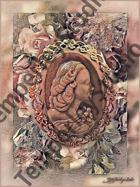 Shabby chic cameo lady in textured frame