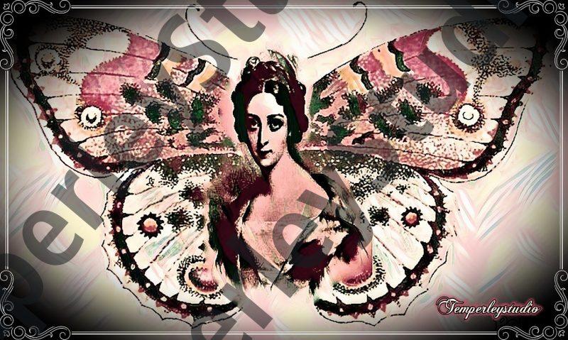 Shabby Lolita butterfly girl