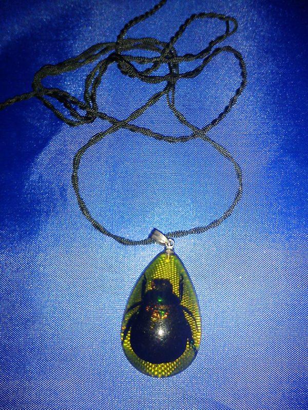 Black real beetle pendant necklace