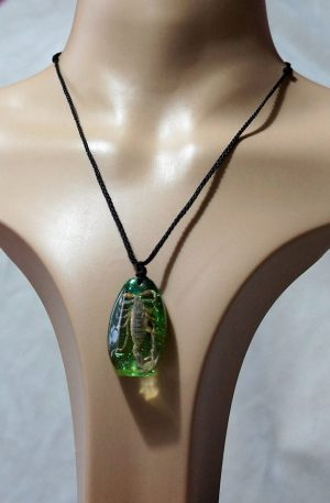 Real scorpion pendant (green) necklace